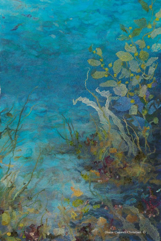 underwater detail